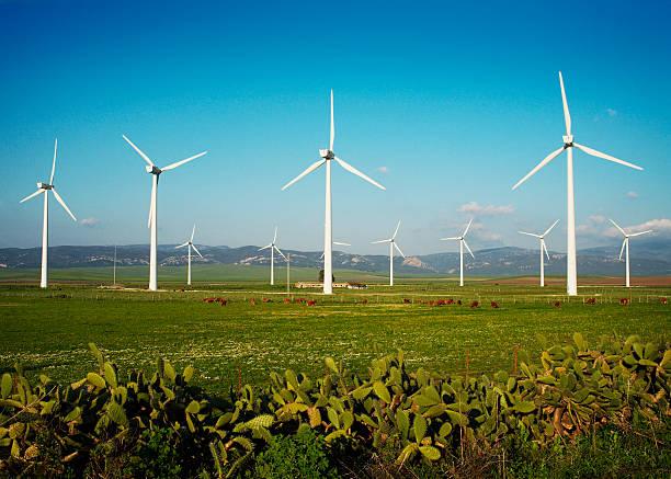 BNDES parques eólicos